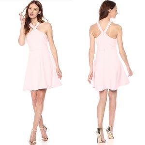 NWOT Revolve Likely Ashland Skater Dress Pink Sz 4